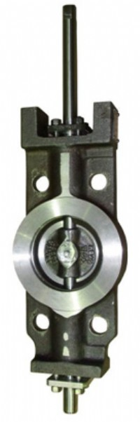Standard Control Valve with Integral Body Step