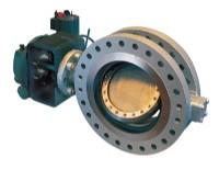 Vanessa series 30,000 triple offset rotary process valve