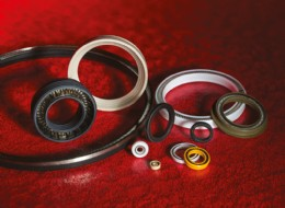 Different Types of Saint-Gobain Seals' OmniSeal® Spring-Energized Seals