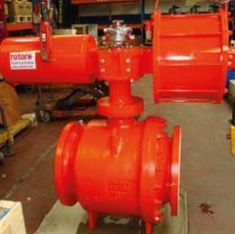 Swing check valve class 300